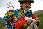 A Peruvian mother wearing traditional clothing spins alpaca wool as she carries her baby on her back near Cuzco, Peru.