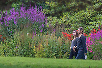 Carnell Estate - Hurlford, Scotland. Angelina Jolie, and her partner Brad Pitt wallking around Carnell Estate they are renting for two weeks while film World War Z in Glasgow..Picture: Maurice McDonald/Universal News And Sport (Scotland). .22 August 2011. www.unpixs.com..