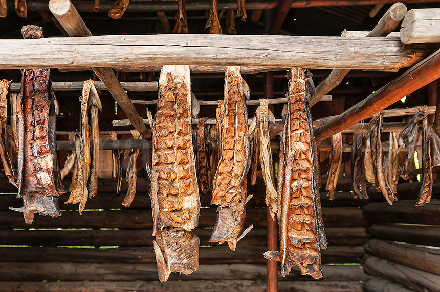 Fish smokehouse, Chena Indian Village, Alaska, USA