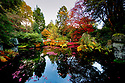 30/07/18<br /> <br /> Just in time for Halloween, a riot of blood red autumn colour frames the China Garden at Biddulph Grange Garden, Staffordshire.<br /> <br /> All Rights Reserved, F Stop Press Ltd. (0)1335 344240 +44 (0)7765 242650  www.fstoppress.com rod@fstoppress.com