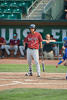 Kyle Kasser (9) of the Idaho Falls Chukars bats against the Ogden Raptors at Lindquist Field on July 29, 2018 in Ogden, Utah. The Raptors defeated the Chukars 20-19. (Stephen Smith/Four Seam Images)