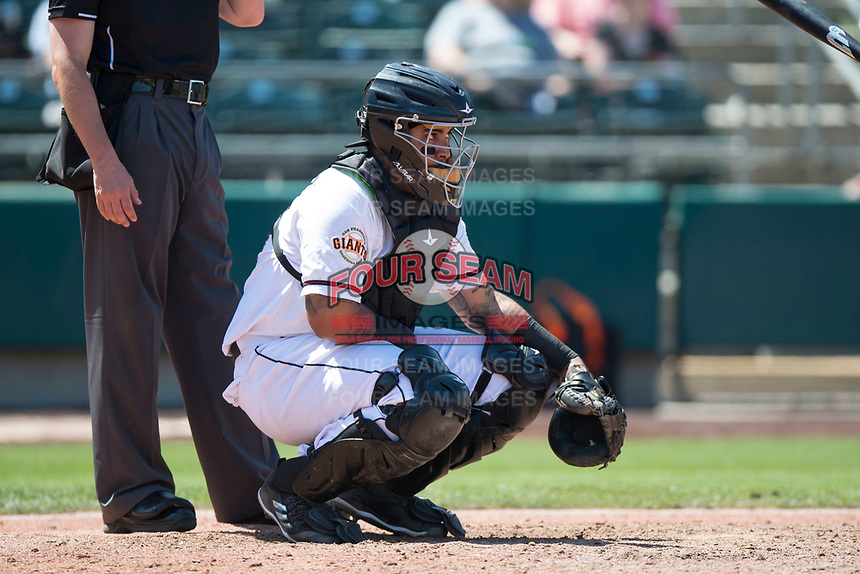 Sacramento RiverCats catcher Hector Sanchez (29) during a Pacific Coast League against the Tacoma Rainiers at Raley Field on May 15, 2018 in Sacramento, California. Tacoma defeated Sacramento 8-5. (Zachary Lucy/Four Seam Images)