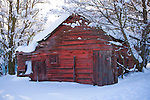 Idaho, Dalton Gardens, Coeur d' Alene. A vintage outbuilding with faded paint in a snow covered landscape.