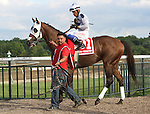 September 1, 2014:  Private Zone, Martin Pedroza up, heads to the post parade for the grade 3 Turf Monster Handicap at Parx Racing in Bensalem, PA.  ©Joan Fairman Kanes/ESW/CSM