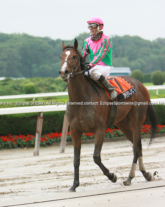 20 JUN 2009: Icon Project surprise winner of the Gr. 2 New York Stakes under Jose Valdivia, Jr. on a sloppy track at Belmont Park.  Elmont, NY