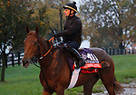 October 28, 2015:  Queen's Jewel, trained by Freddy Head, and owned by Wertheimer et Frere, is entered in the Breeder's Cup Filly & Mare Turf $2,000,000.  Candice Chavez/ESW/CSM