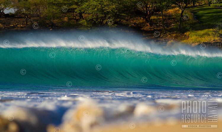 Big blue and green wave cresting with white water washing up the shore at Hapuna Beach State Park, Big Island.