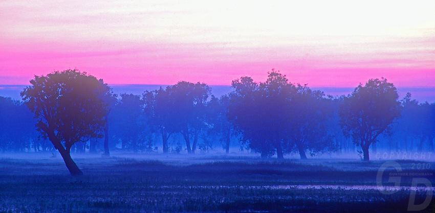 Sunrise at Yellow Waters in Kakadu National Park Northern Territory Australia