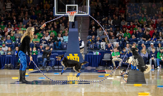 January 11, 2020; Halftime show during the men's basketball game against Louisville at the Purcell Pavilion. (Photo by Barbara Johnston/University of Note Dame)