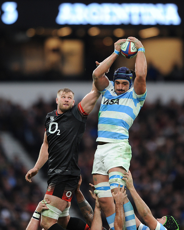 Tomas Lavanini of Argentina wins the linnet against George Kruis of England during the Old Mutual Wealth Series match between England and Argentina at Twickenham Stadium on Saturday 11th November 2017 (Photo by Rob Munro/Stewart Communications)