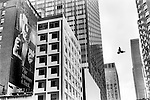 Cigarette advertisement for Barclay cigarettes, The Pleasure is Back  painted onto the side of a midtown skyscraper now partially hidden by a newer modern building. 1990s   USA