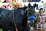 May 01,, 2021: Medina Spirit, winner of the 147th Kentucky Derby leaves the winners circle at Churchill Downs.  Louisville, KY on May 01, 2021.  Candice Chavez/ESW/CSM
