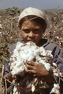 A young girl is employed to cotton industry in Nicaragua - Child labor as seen around the world between 1979 and 1980 - Photographer Jean Pierre Laffont, touched by the suffering of child workers, chronicled their plight in 12 countries over the course of one year.  Laffont was awarded The World Press Award and Madeline Ross Award among many others for his work.