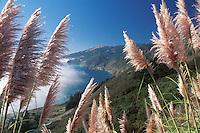 California, Big Sur, Pacific Ocean coastline near Lucia