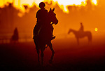 OCT 25: Scenes from Breeders' Cup workouts, at Santa Anita Park in Arcadia, California on Oct 25, 2019. Evers/Eclipse Sportswire/Breeders' Cup