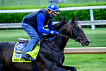 April 28, 2021: Rock Your World, trained by trainer John Sadler, exercises in preparation for the Kentucky Derby at Churchill Downs on April 29, 2021 in Louisville, Kentucky. John Voorhees/Eclipse Sportswire/CSM