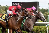 Cascadilla Falls (60 nips Funny Sunny at the wire in the Lucy Scribner overnight stakes.