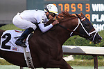 HOT SPRINGS, AR - MARCH 17: Hedge Fund #2 with jockey Jose Ortiz aboard before crossing the finish line in the Essex Handicap at Oaklawn Park on March 19, 2018 in Hot Springs, Arkansas. (Photo by Justin Manning/Eclipse Sportswire/Getty Images)