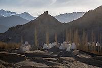 Chortens in the Sunset at Shey Monastery near Leh, Ladakh
