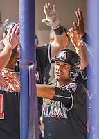 7 March 2016: Miami Marlins catcher Tomas Telis returns to the dugout after scoring during a Spring Training pre-season game against the Washington Nationals at Space Coast Stadium in Viera, Florida. The Nationals defeated the Marlins 7-4 in Grapefruit League play. Mandatory Credit: Ed Wolfstein Photo *** RAW (NEF) Image File Available ***