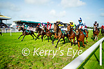 Action from the Listowel races on Monday.