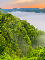New River Gorge National Park, West Virginia. New River Gorge Bridge from Kaymoor View Point. Morning Fog in the Gorge.