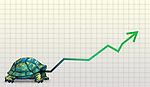 Illustrative image of tortoise with line graph representing slow and steady business growth