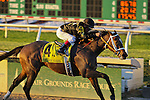OXBOW ridden by Jon Court wins The 69 Running of Lecomte Stakes at Fair Grounds Race Course, New Orleans, LA on January 19, 2013. (( Special transmission of horses in the Top 25 for points for the 2013 KentuckyDerby ))