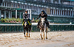 September 3, 2020: as horses prepare for the 2020 Kentucky Derby and Kentucky Oaks at Churchill Downs in Louisville, Kentucky. The race is being run without fans due to the coronavirus pandemic that has gripped the world and nation for much of the year. Scott Serio/Eclipse Sportswire/CSM