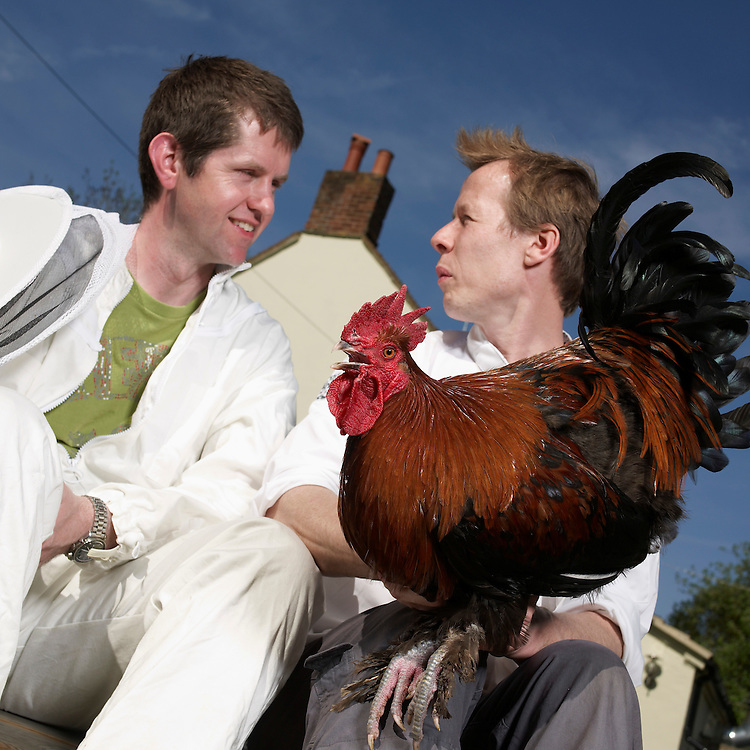 The Wellington Arms Pub and restaurant in Baughurst , Hampshire - With Chickens, and Bees - It is run by.Simon Page and Jason King.