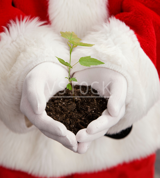 USA, Illinois, Metamora, Midsection of Santa Claus holding pile of dirt with seedling