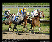 Thoroughbred (#4) beating  MD Blue Chip (#3) & Aim South (#5).prep race for The 2008 Arabian Classic