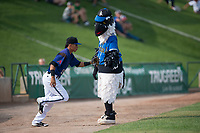 Missoula Osprey infielder Brandon Leyton (12) gets a high five from Ollie Osprey before a Pioneer League game against the Orem Owlz at Ogren Park Allegiance Field on August 19, 2018 in Missoula, Montana. The Missoula Osprey defeated the Orem Owlz by a score of 8-0. (Zachary Lucy/Four Seam Images)