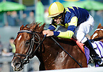09 September 19: Bridgetown, ridden by Robert Landry and trained by Ken McPeek, wins the grade 3 Summer Stakes for two year olds at Woodbine Racetrack in Rexdale, Ontario.