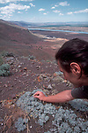 Hanford Reach National Monument, New to science plant, Erigonum codium, Umtanum desert buckwheat, Umtanum Ridge, Columbia River, Fitzner/Eberhardt Arid Lands Ecology Reserve; Hanford site, Washington State,
