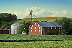 Union County Barn in June.