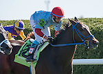 LEXINGTON, KY - OCT 08: Mongolian Saturday, #12, ridden by Carlos Montalvo and trained by Enebish Ganbat wins the Woodford Stakes at Keeneland Racetrack in Lexington, KY. (Photo by Samantha Bussanich/Eclipse Sportswire/Getty Images)