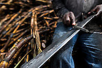 A sugar cane cutter sharpens his machete on a plantation near Florida, Valle del Cauca, Colombia, 25 May 2012. The Cauca River valley is the booming centre of agriculture and sugar cane cultivation in Colombia. Although the main part of the crop is still refined into a sugar, the global demand of biofuel and ethanol has intensified the sugar cane production in the last years. 85 percent of Colombia's cane crop is still harvested the manual way, employing approximately 30,000 workers. Working six days a week, under harsch labor conditions, the sugar cane cutters earn $4 for every ton of cane they cut, with no access to social benefits due to the tricky system of intermediary contractors and cooperatives.