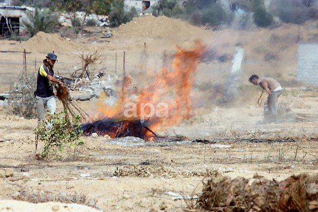 Palestinians burn branches as the International Committee of the Red Cross (ICRC) assists Palestinian farmers to repair their fields that were devastated during the Israeli army summer's military offensive on the Gaza Strip on October 22, 2014, in Khan Yunis' Khuzaa neighbourhood in the southern Gaza Strip near the Israeli border. Photo by Abed Rahim Khatib