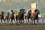 7 November 2009:  Zenyatta with Mike Smith up (teal, outside) wins the G1 $5 Million Breeder's Cup Classic in Arcadia, California.