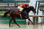 November 28, 2015 Covert Gem (Jack Gilligan) wins the 6th race at Churchill Downs, a one mile race for maiden two year old fillies. Owner Lochness Inc. (Nina Hahn), trainer Michael Ann Ewing. By Discreet Cat x Antique Crystal (Devil His Due) ©Mary M. Meek/ESW/CSM