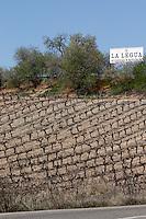 cabernet sauvignon bodegas frutos villar , cigales spain castile and leon