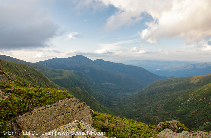 View across the Great Gulf Wilderness from along the Appalachian Trail in the White Mountains, New Hampshire USA during the summer months. Mount Adams (C), Mount Madison (R)