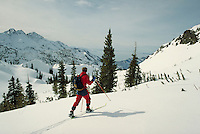 Back-country telemark skier traverses an untracked slope in the Wasatch Mountains. sports, skiing, cross-country. Utah, Wasatch Mountains.