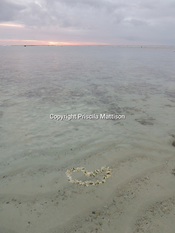 Rarotonga, Cook Islands - September 20, 2012:  A lei floats in the clear waters of the lagoon as the sun sets.