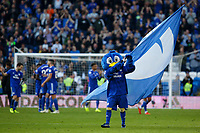 The Cardiff mascot flies the flag in celebration to the club's first win during the Premier League match between Cardiff City and Fulham FC at the Cardiff City Stadium, Wales, UK. Saturday 20 October 2018