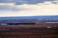 The vineyard and winery at evening sunset under dark storm clouds Bodega Del Fin Del Mundo - The End of the World - Neuquen, Patagonia, Argentina, South America