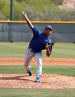 Jeremiah Estrada - Chicago Cubs 2019 spring training (Bill Mitchell)