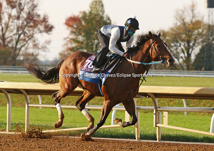 Jackie'S Warrior, trained by trainer Steven M. Asmussen, exercises in preparation for the Breeders' Cup Juvenile at Keeneland Racetrack in Lexington, Kentucky on November 1, 2020. /CSM