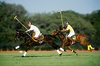 #5130.Legs at full stride as polo players charge downfield in hot pursuit..